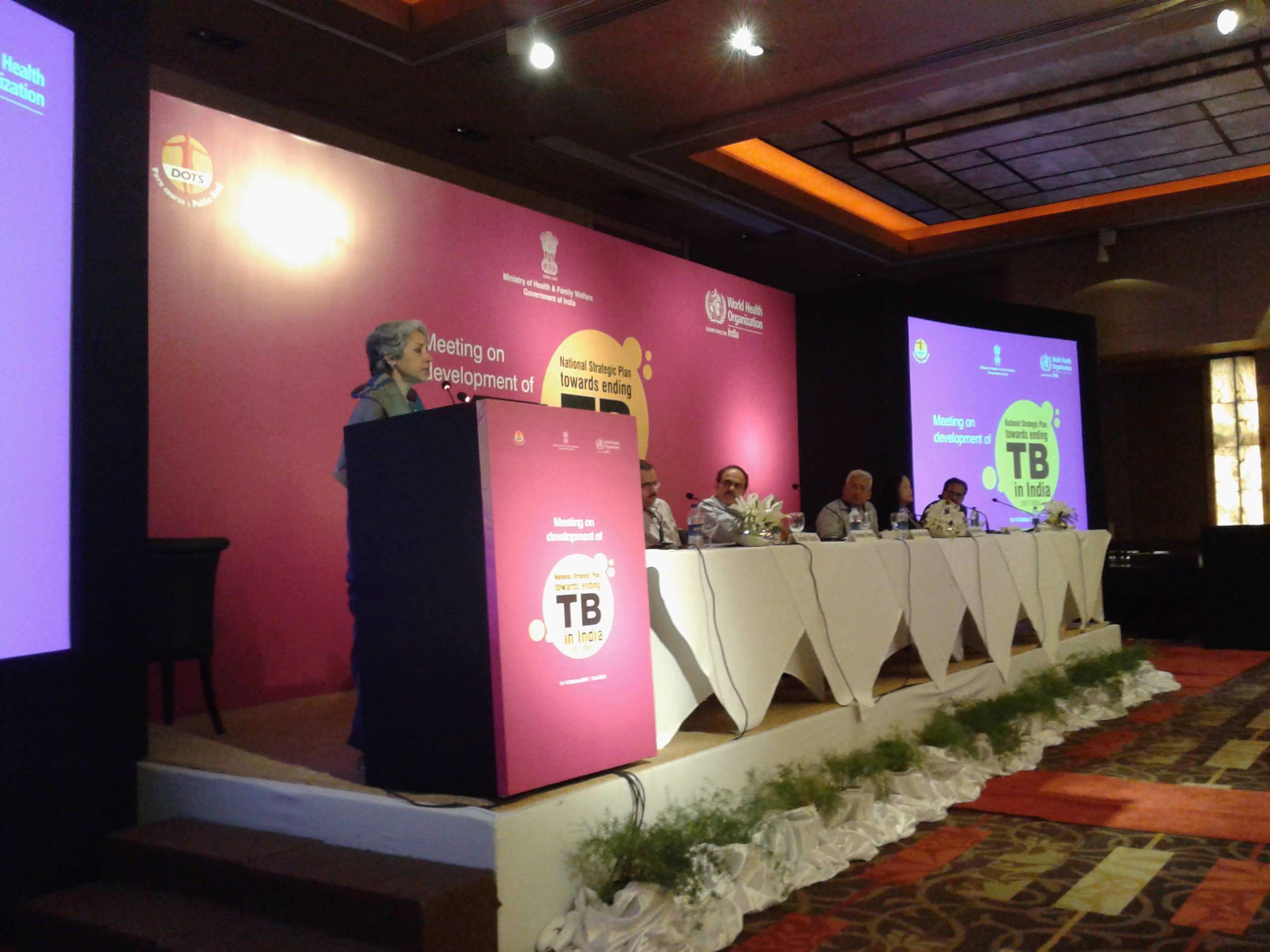 Meeting on Development of National Strategic Plan Towards Ending TB in India (2017-23)